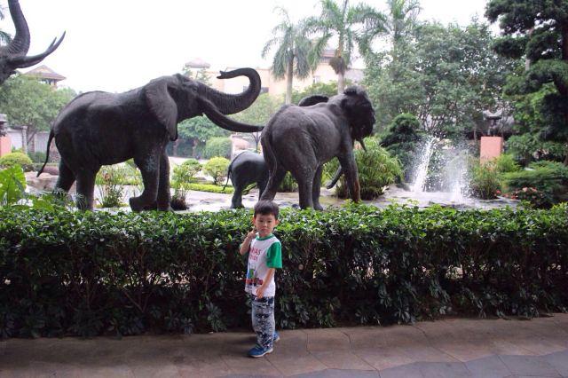 长隆酒店 大马戏 野生动物园