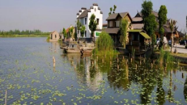 上海金龟岛养生基地