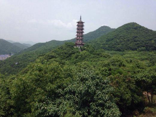 黄贤国家森林公园图片