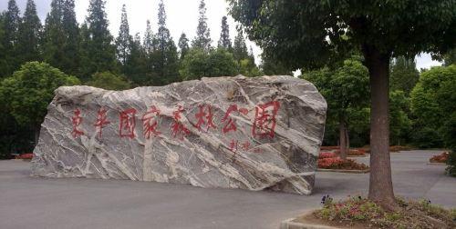 崇明2日公司旅游(4钻)·鸿华大酒店 东平森林公园