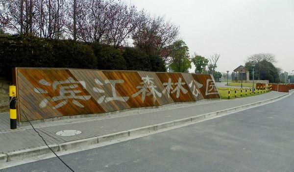 2010-01-09 林木葱郁高沙滩 三水并流滨江园