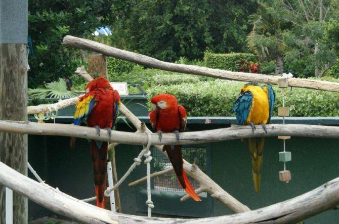 自驾游动物园(5)
