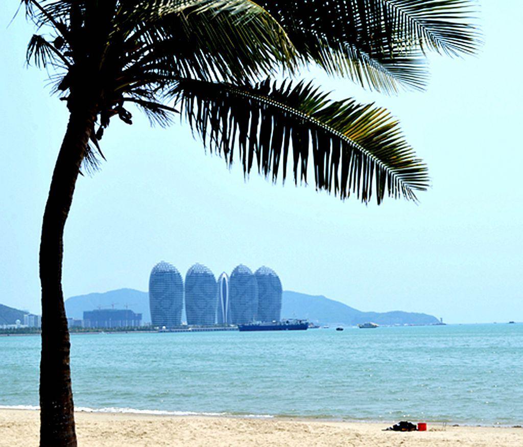 """最能体现蓝天大海沙滩椰树的则是有十几公里的三亚湾""""梦椰长廊"""",沙松"""