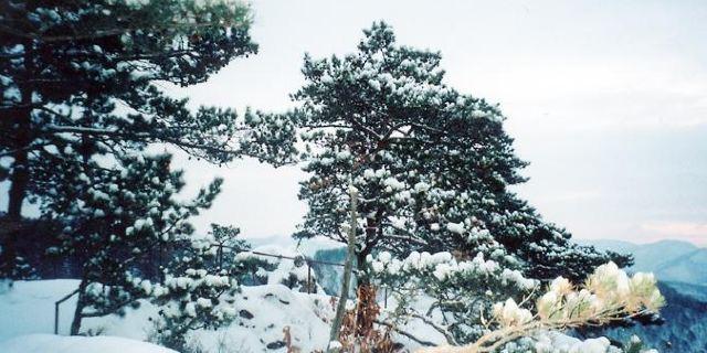和龙仙景台自然风景区位于吉林省延边州和龙市德化镇