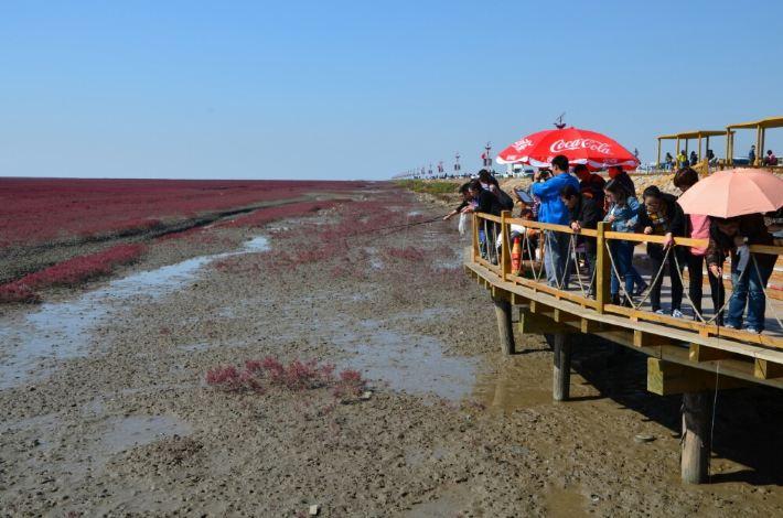 【十一奇观东自驾之四】水果风景深圳滩,游记攻略红海世界图片