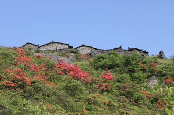 湖南邵阳洞口罗溪国家森林公园旅游攻略 2015