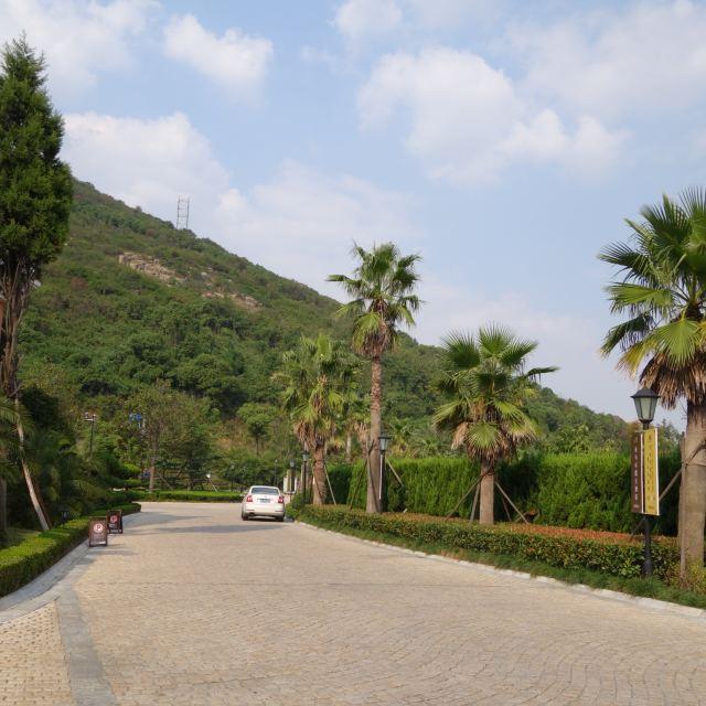 含酒店大床房1晚,早餐2份,贡多拉1次,九龙山度假区门票,外蒲岛风景区