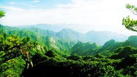天宝岩自然保护区