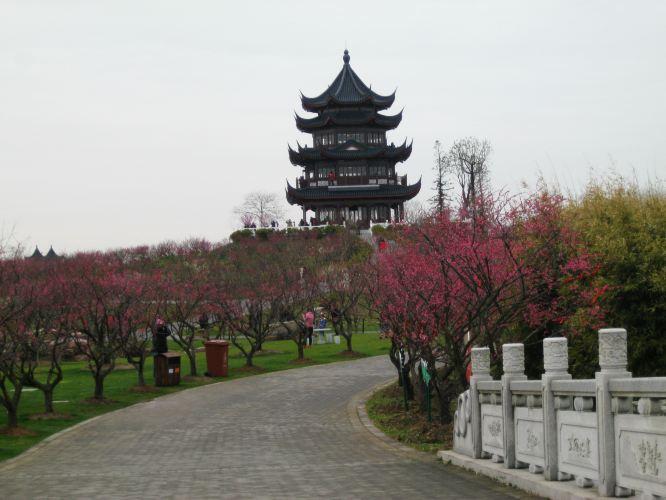 上海海湾国家森林公园位于奉贤区海湾镇境内,拥有上海市域内最优良的5.3公里海岸线。公园占地近16000亩,主要游览区域有西部园区和梅园,前者的面积有后者的2倍大!我们这次主要是到梅园赏梅。西部园区和梅园加起来才是完整的那个上海海湾国家森林公园。 由于公园占地较广,区域与区域之间需要坐车接驳,我们来时抵达的是4号停车场,这里是奉贤滨海古园的所在地。 TIPS-上海海湾国家森林公园交通: 自驾: 1.