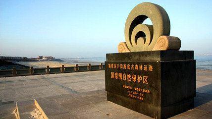 深沪湾海底古森林遗迹自然保护区