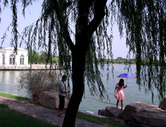 天台飞鹤山公园