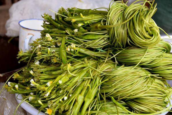 水性杨花的意思_水性杨花,原来是道菜.水生植物,后面会点到这个菜.
