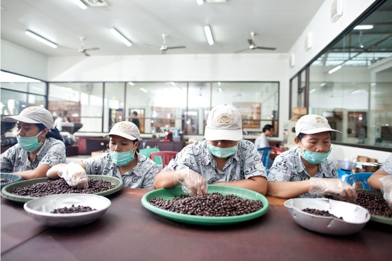 迷上了巴厘岛的游记金兔咖啡-巴厘岛攻略攻略国外自助游黄金图片