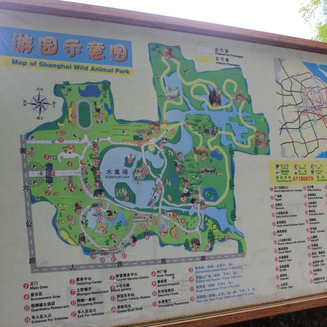 上海野生动物园很大,可以先看看导览图,就知道怎么玩了.
