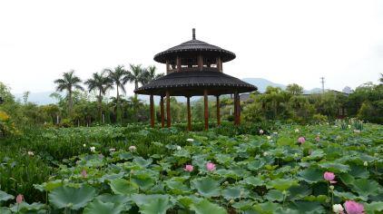 【聚龙岛欢乐园】价格_厂家_聚龙岛欢乐园供应商:广州