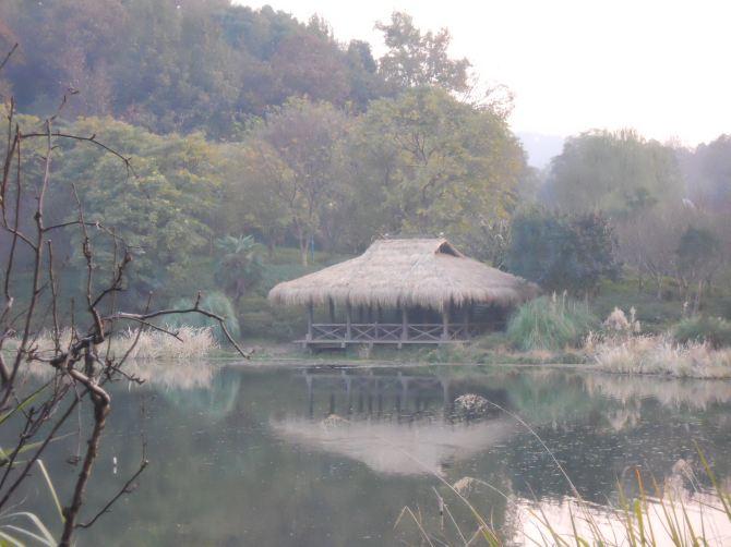 冬季出发杭州自由行实用图文攻略 逛西湖喝龙