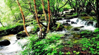 冶力关国家森林公园