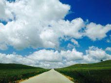 【携程攻略】锡林浩特旅游图片,锡林浩特旅游四月旅游国内攻略图片