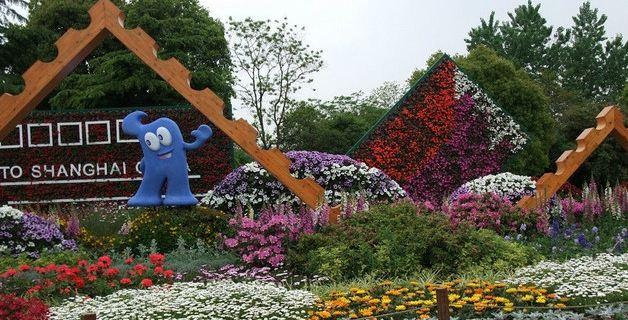 上海滨江森林公园图片