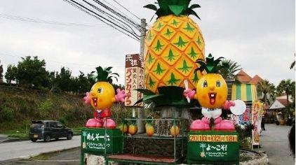 以冲绳特产菠萝为主题的公园