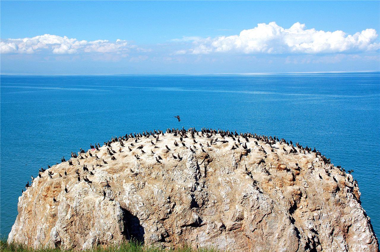 青海湖 西宁 德令哈 敦煌 嘉峪关 张掖9日8晚跟团游·畅游西北!