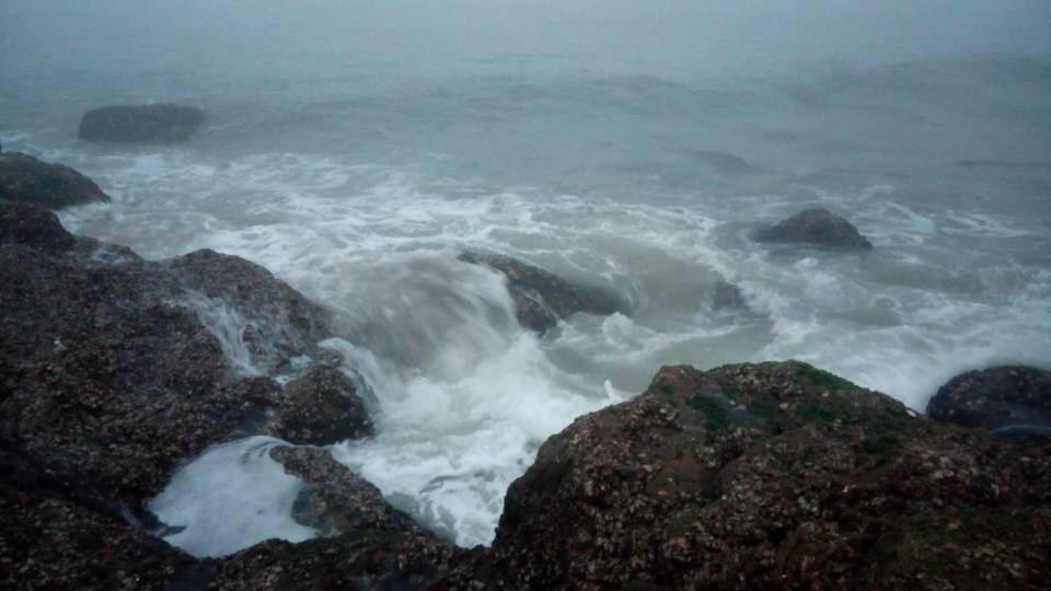 迷雾中的优雅——2014年7月大连瓜皮岛行