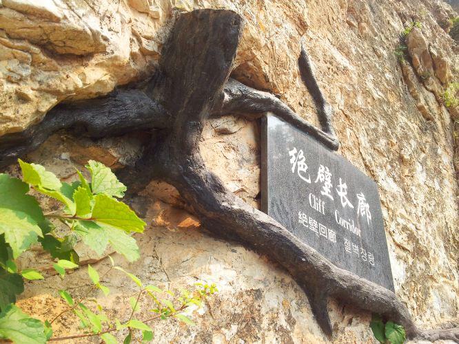 北京故宫建筑手抄报