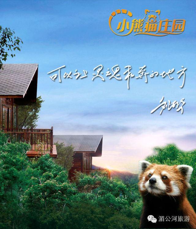 小熊猫庄园︱可以让灵魂私奔的地方 - 普洱游记