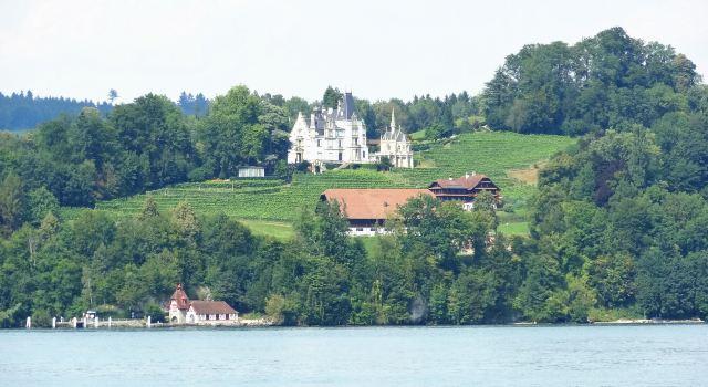 瑞士森林阳光4k风景