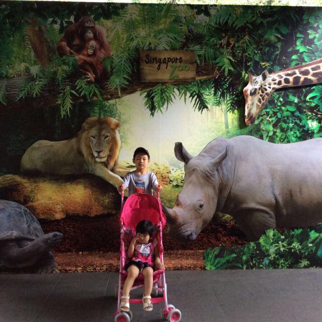 动物园门口.汽车师傅接了我们去动物园