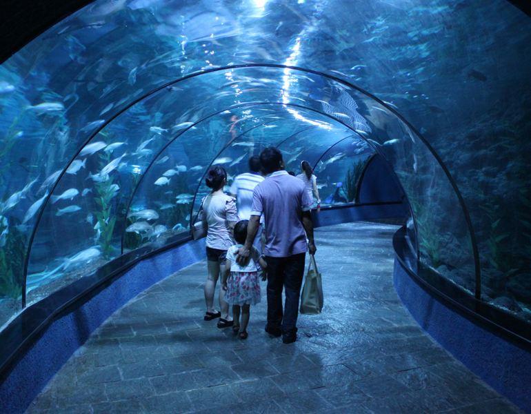 壁纸 海底 海底世界 海洋馆 水族馆 770_600
