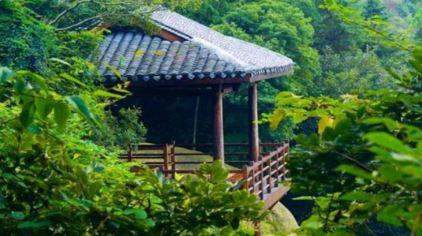 慈溪五磊山景区门票高清图片