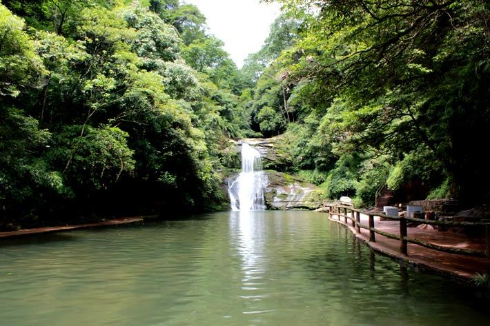四川雅安2日1晚跟团游·碧峰峡 野生动物园 上里古镇