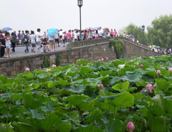 杭州西湖断桥手绘高清