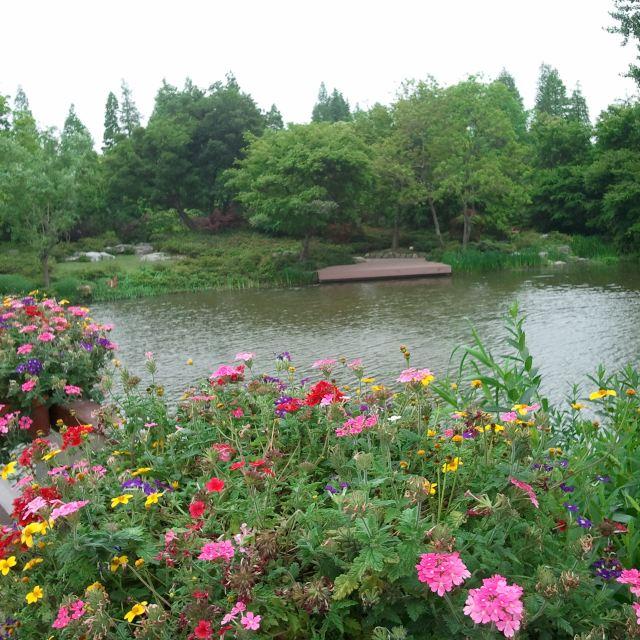 远离雾霾的呼吸——悠然滨江森林公园行