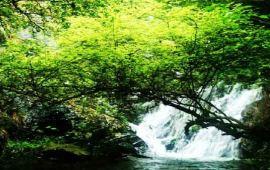 赣州丫山风景区天气预报一周,明天丫山风景区天气预报 旅游高清图片