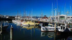 旧金山码头