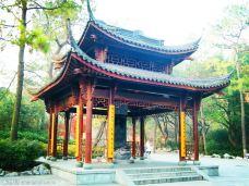 【携程图片】杭州西湖攻略,吉林旅游景点攻略西湖自驾7日游图片
