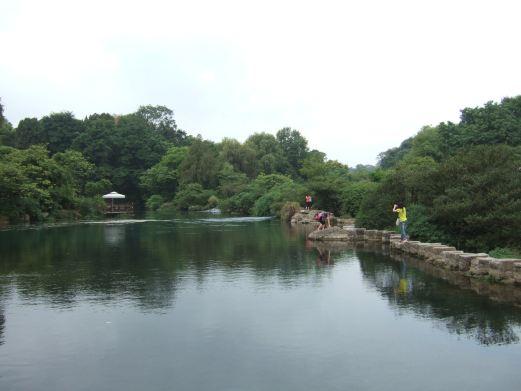 花溪公园图片图片