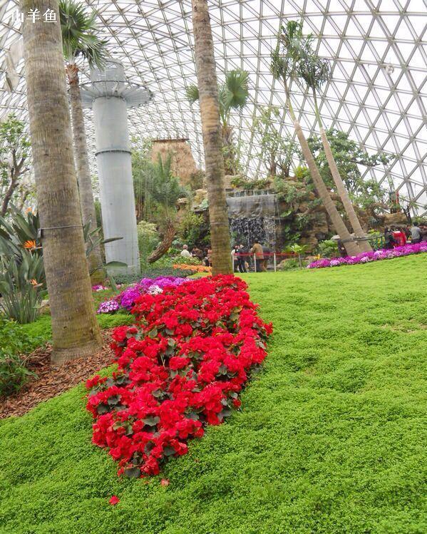 上海辰山植物园一年四季都有植物观赏,即使是冬天,展览温室里也呈现出郁郁葱葱的景象。由采石场改造的矿坑花园十分特别,下到底部,还能看到瀑布。另外还有专门设置的盲人园区,可以通过触觉和嗅觉来感受春的气息。 上海辰山植物园因园中的辰山而得名,爬到山顶可俯瞰公园全景。20世纪由于采石,辰山的南坡已被削去,现在在采石场原址上修建了矿坑花园,是园区内的一大亮点。游客走下台阶,到矿坑底部湖面上的浮桥,瀑布泻入湖中,穿越山洞,可来到相连的岩石和药用植物园,仿佛真的有下矿井的感觉。 植物园共有3个门,1号门、2号门和3号门