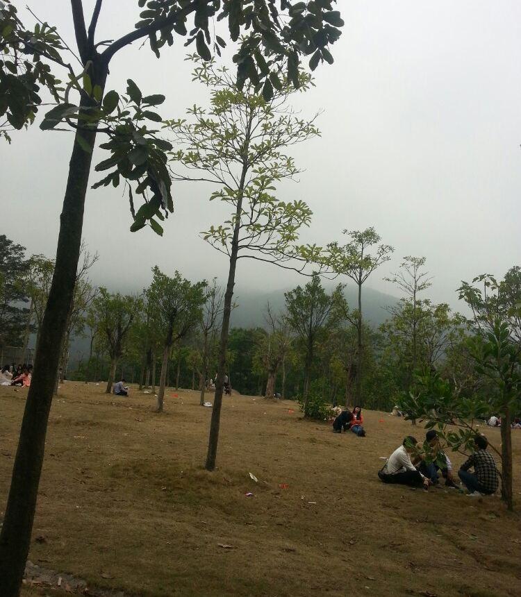 羊台山森林公园