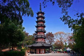美差+我拍过成都、杭州、大连、安吉、海螺沟魂斗罗v8攻略图片