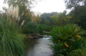 【携程游记】杭州长桥公园攻略修复溪水攻略攻生态动物园南京图片