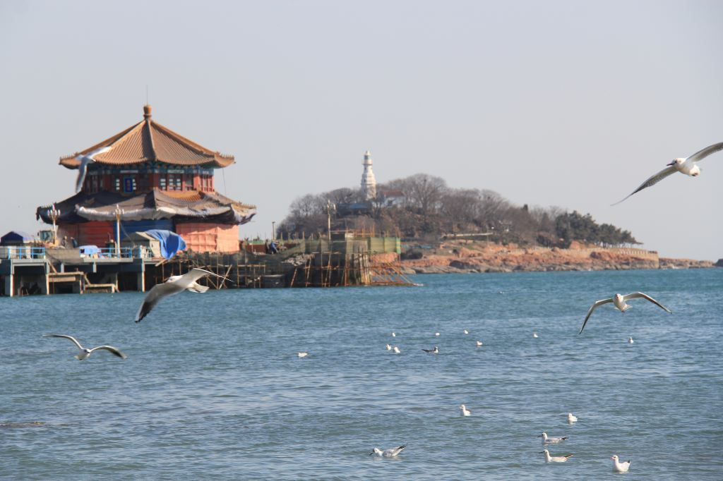 春季自驾游30:青岛——游栈桥,小青岛公园
