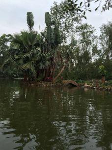 【携程攻略】海口海南热带野生动植物园图片,