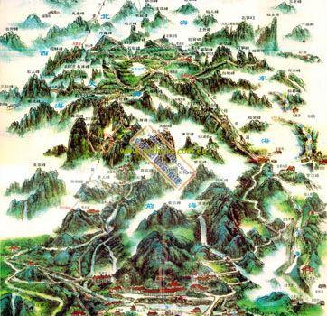 植被平面手绘图