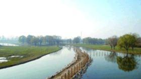 南海大湿地公园