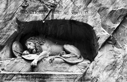 濒临动物的消亡年代碑