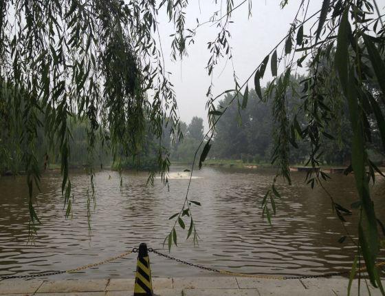 北京通州大运河森林公园