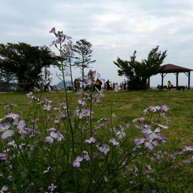 独立岩周边散落着虎岛,鸟岛等美丽的小岛和仙女岩等形态奇异的